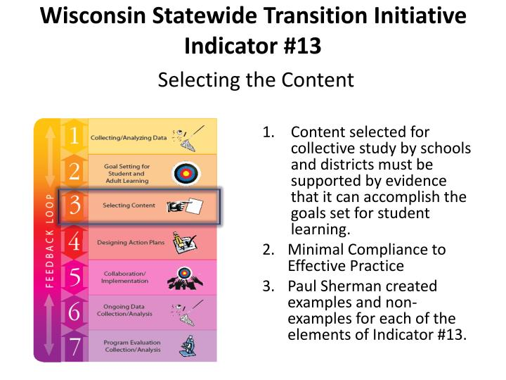 Wisconsin Statewide Transition Initiative Indicator #13