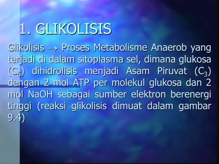 1. GLIKOLISIS
