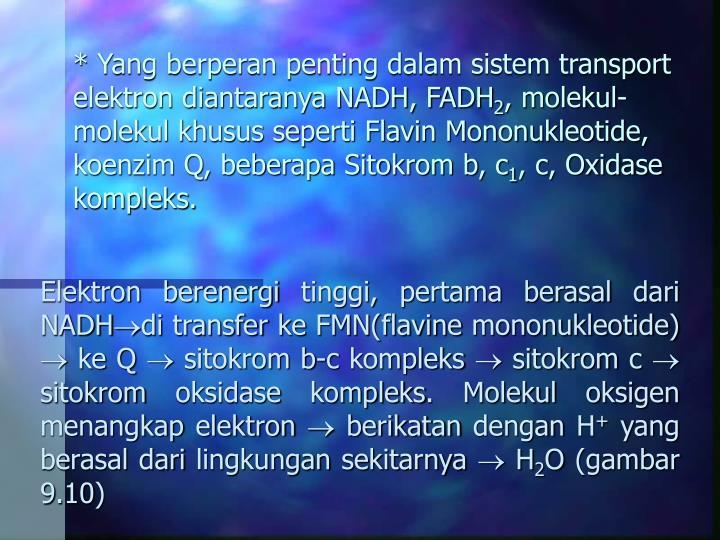 * Yang berperan penting dalam sistem transport elektron diantaranya NADH, FADH