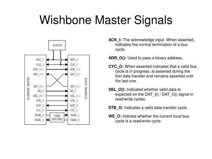 Wishbone Master Signals