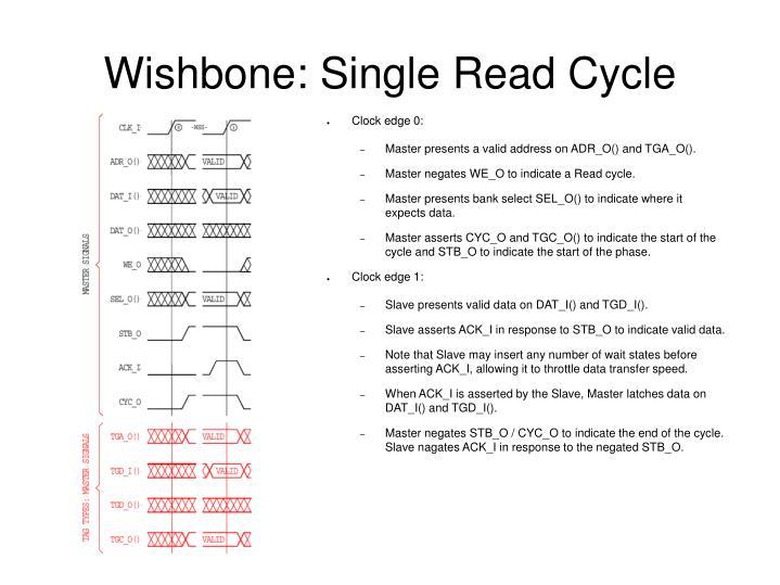 Wishbone: Single Read Cycle