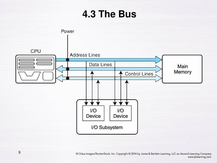 4.3 The Bus