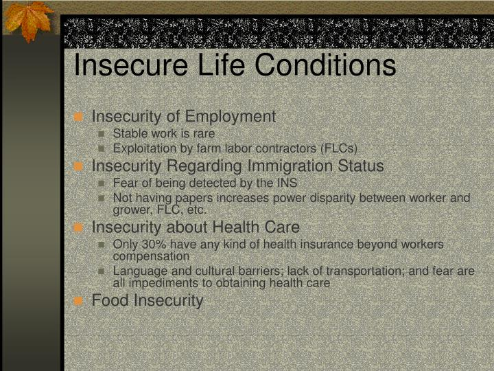 Insecure Life Conditions