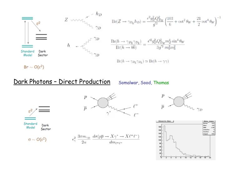 Dark Photons – Direct Production