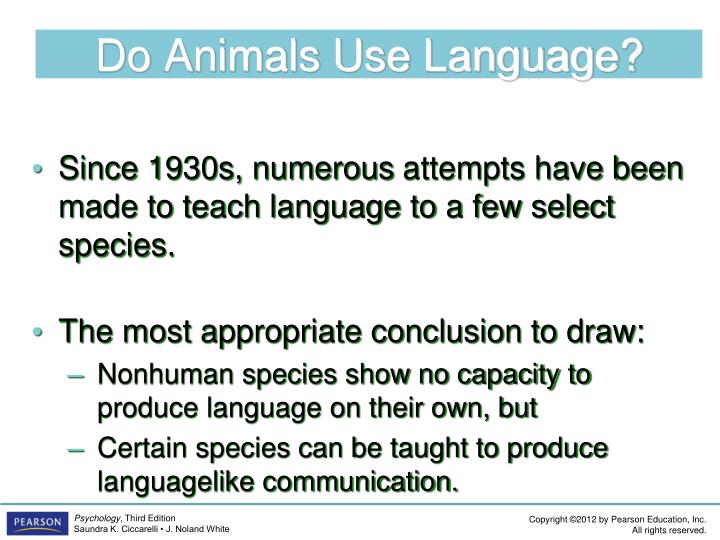 Do Animals Use Language?
