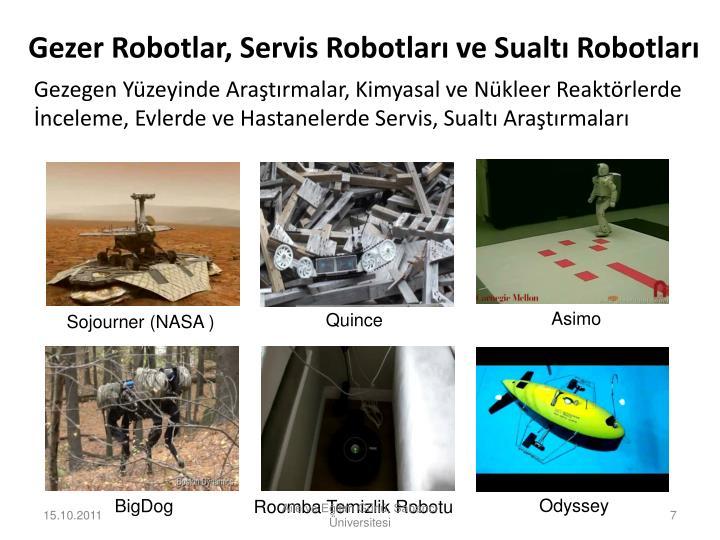 Gezer Robotlar, Servis Robotları ve Sualtı Robotları