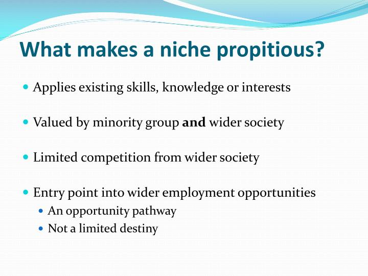 propitious niche These businesses have been innovative and successful by creating niche markets.