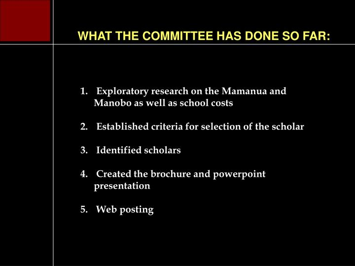 WHAT THE COMMITTEE HAS DONE SO FAR: