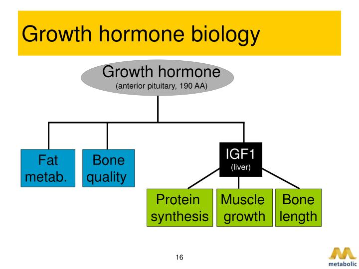 Growth hormone biology