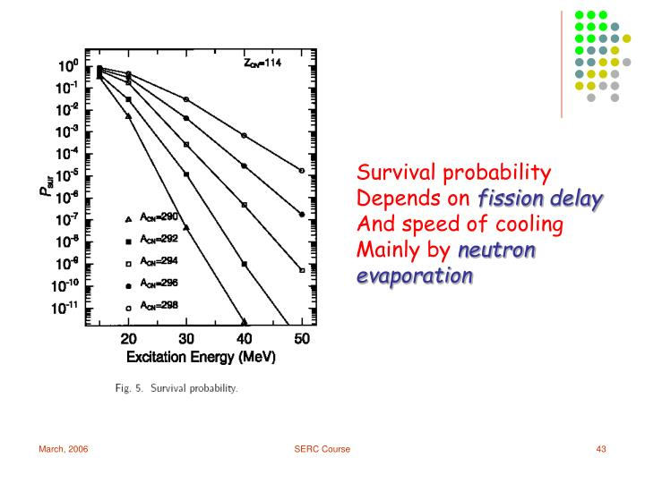 Survival probability