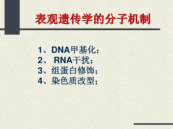 表观遗传学的分子机制