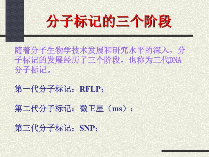 分子标记的三个阶段