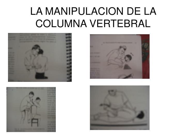 LA MANIPULACION DE LA COLUMNA VERTEBRAL