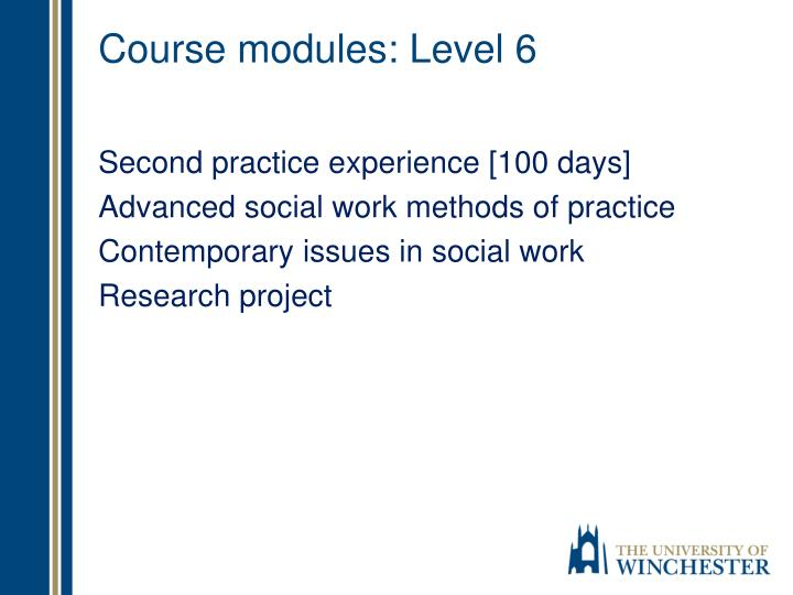 Course modules: Level 6