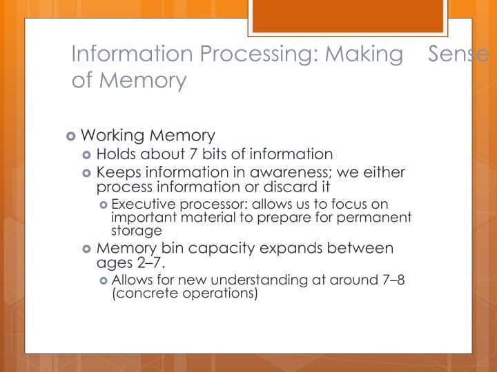Information Processing: Making    Sense of Memory
