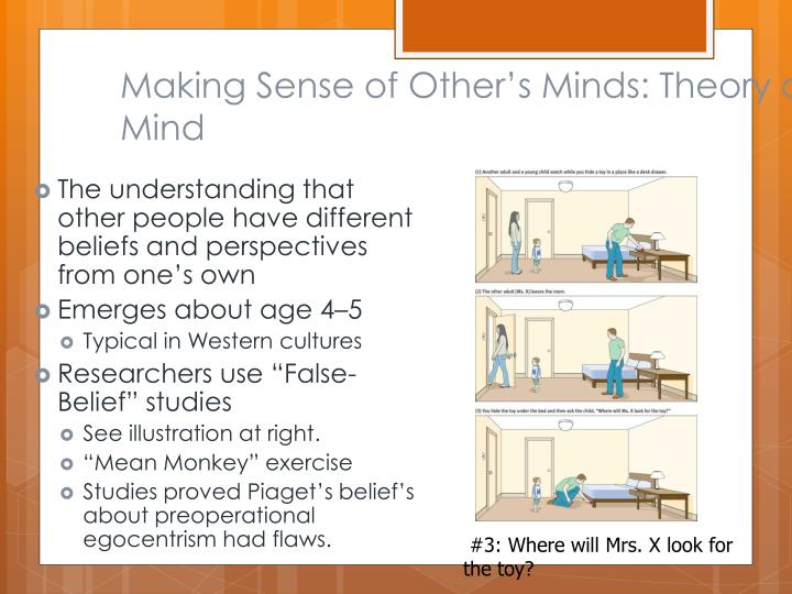 Making Sense of Other's Minds: Theory of Mind