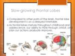 slow growing frontal lobes