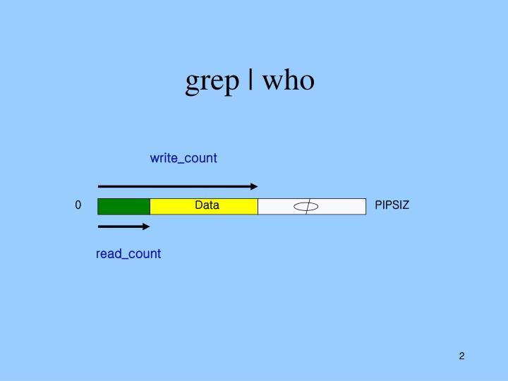 grep | who