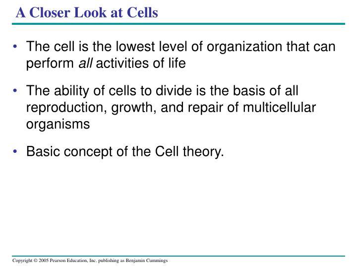 A Closer Look at Cells