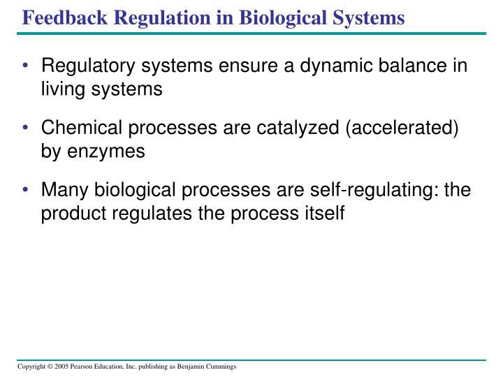 Feedback Regulation in Biological Systems