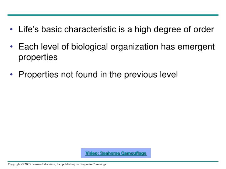 Life's basic characteristic is a high degree of order
