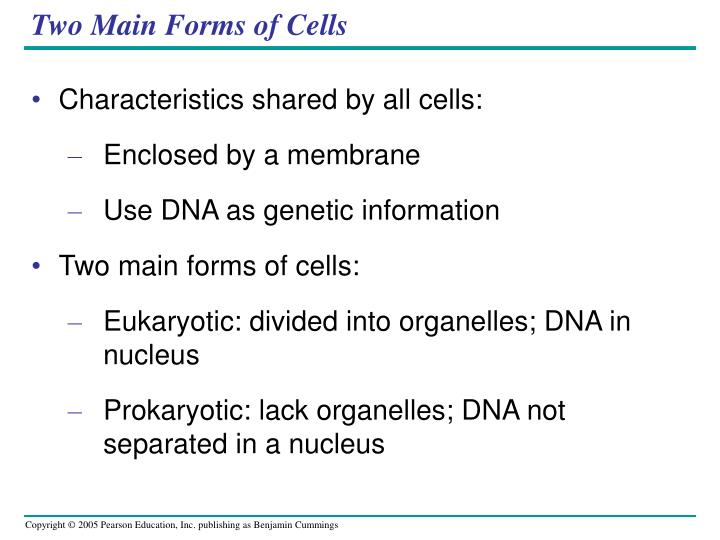 Two Main Forms of Cells