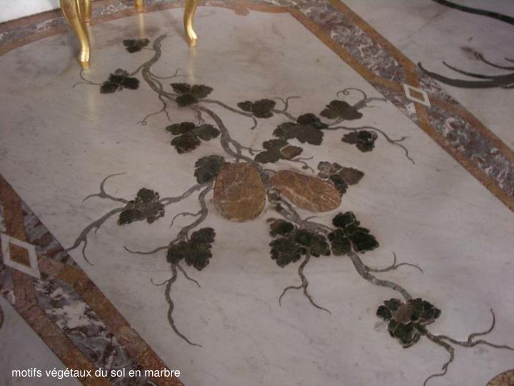 motifs végétaux du sol en marbre