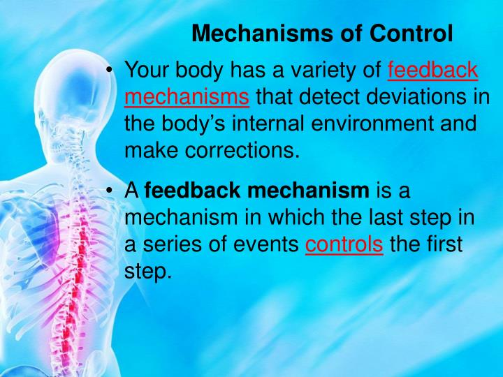 Mechanisms of Control