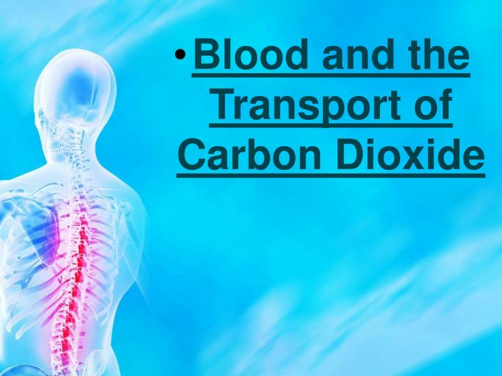 Blood and the Transport of Carbon Dioxide