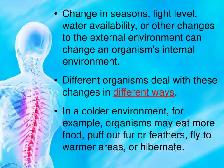 Change in seasons, light level, water availability, or other changes to the external environment can change an organism's internal environment.