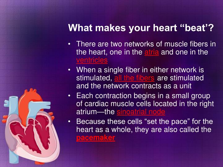 "What makes your heart ""beat'?"
