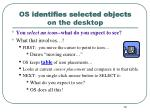 os identifies selected objects on the desktop