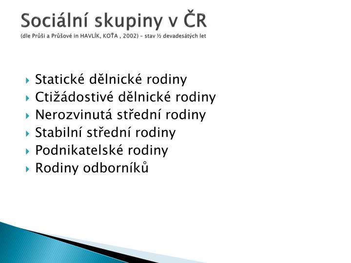 Sociální skupiny v ČR