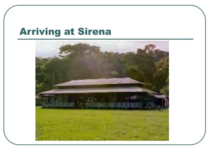 Arriving at Sirena