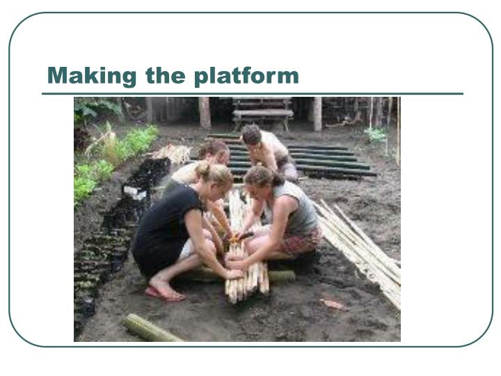 Making the platform