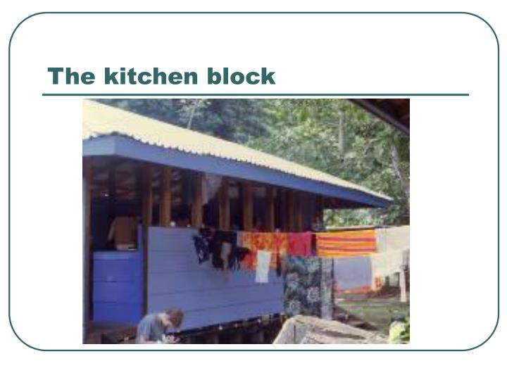 The kitchen block