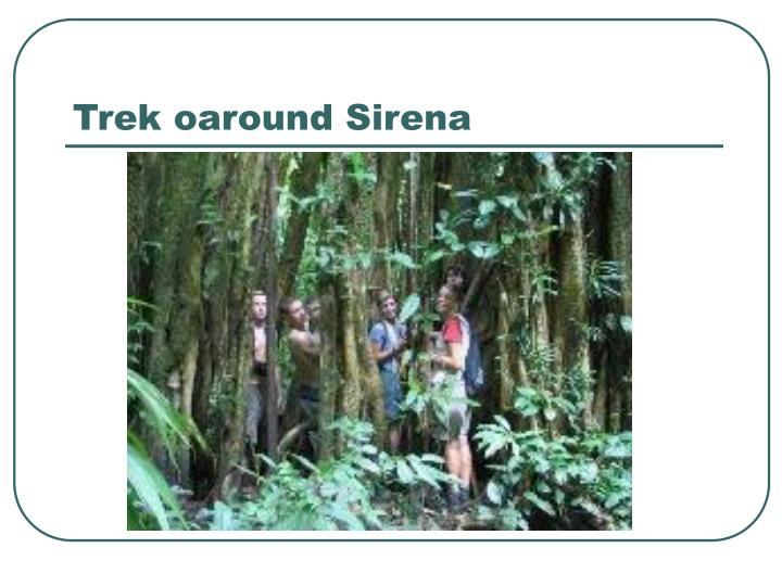 Trek oaround Sirena