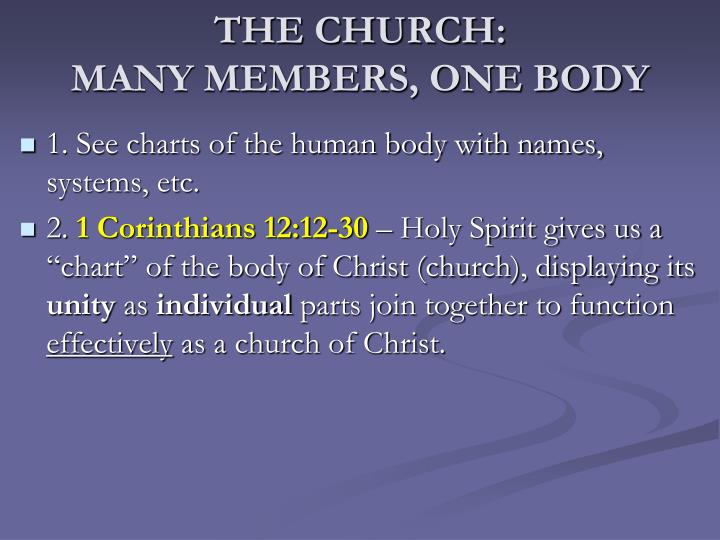 The church many members one body1