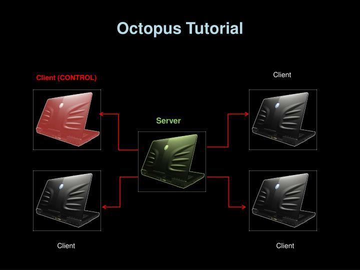 Octopus Tutorial