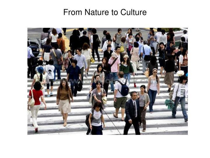 From Nature to Culture