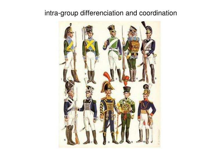 intra-group differenciation and coordination