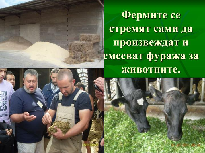 Фермите се стремят сами да произвеждат и смесват фуража за животните.