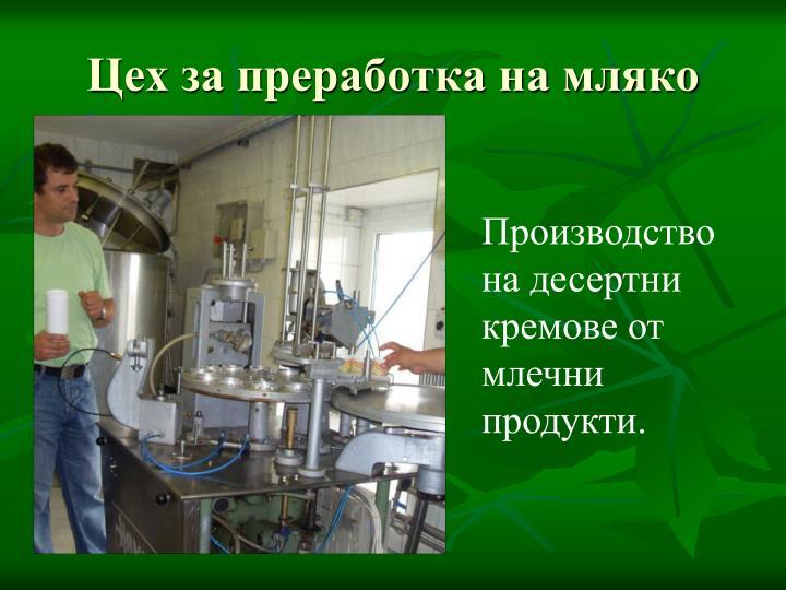 Цех за преработка на мляко