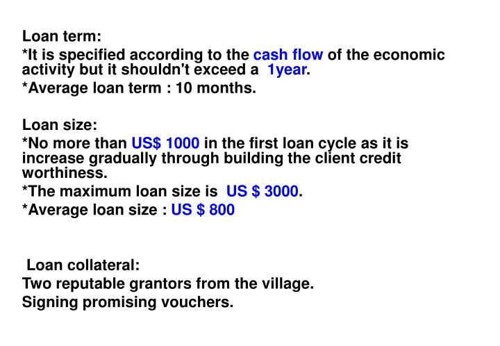 Loan term: