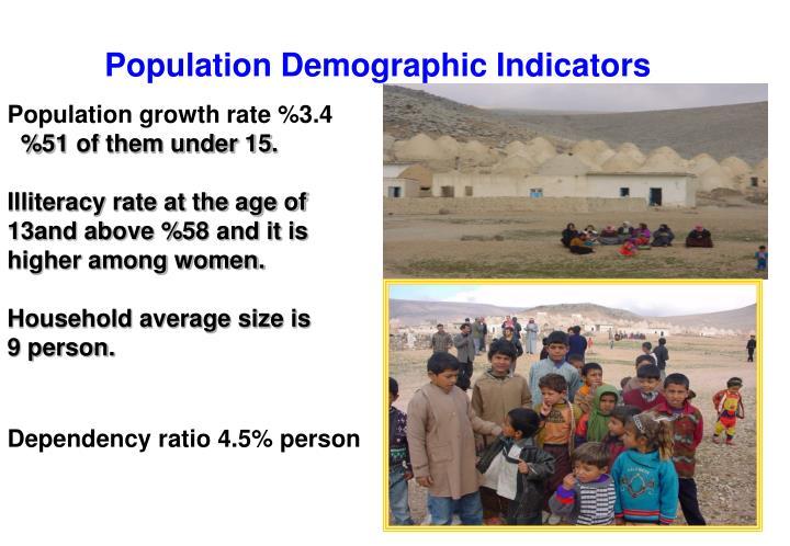 Population Demographic Indicators