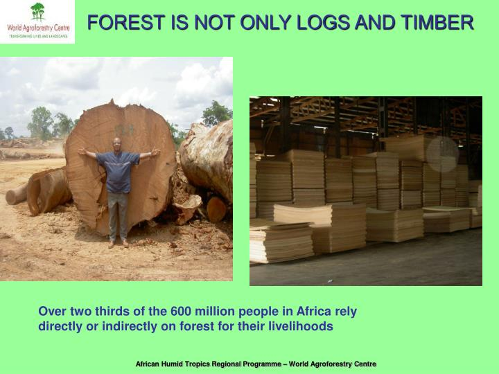 FOREST IS NOT ONLY LOGS AND TIMBER