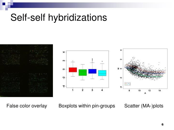 Self-self hybridizations