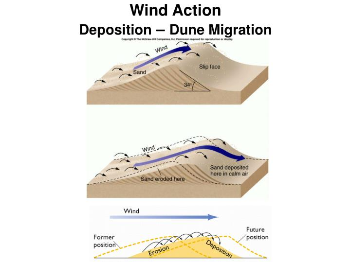 Wind Action
