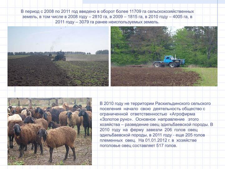 В период с 2008 по 2011 год введено в оборот более 11709 га сельскохозяйственных земель, в том числе в 2008 году – 2810 га, в 2009 – 1815 га, в 2010 году – 4005 га, в 2011 году – 3079 га ранее неиспользуемых земель.