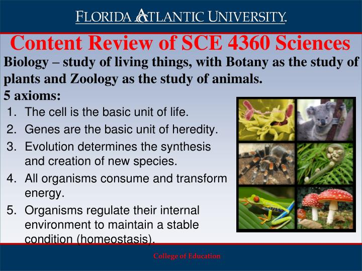 Content Review of SCE 4360 Sciences